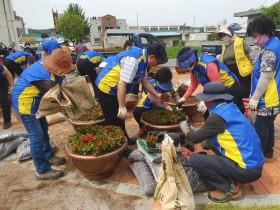 의흥면주민자치위원회, 경로당 꽃 나눔 행사 가져