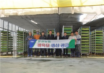 팔공농협, 벼 육묘생산 공급 ... 농작업대행 사업 시행